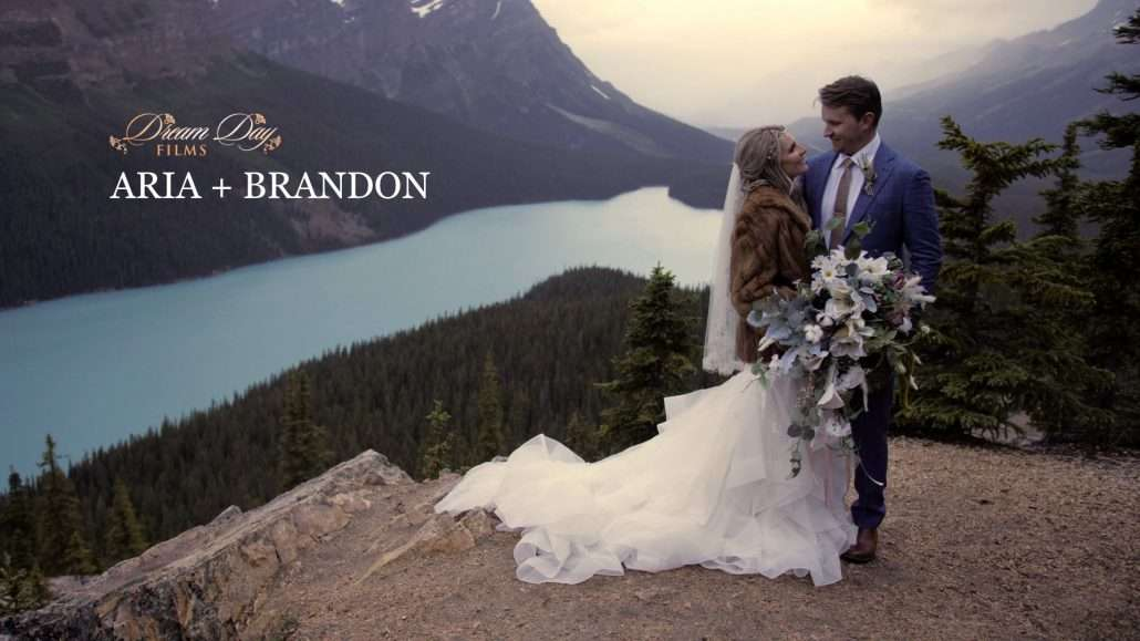 Overlay image for wedding film